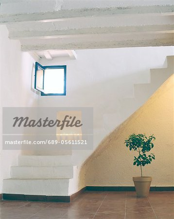 Room with potted plant and stone staircase Stock Photo - Premium Royalty-Free, Image code: 689-05611521