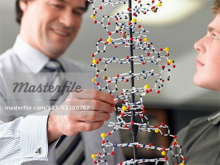 Teacher looking at student's DNA model, close up Stock Photo - Premium Royalty-Free, Image code: 693-03300782
