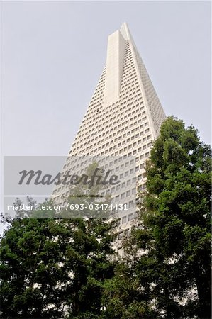 Low angle view of the Transamerica Pyramid, San Francisco designed by William Pereira Stock Photo - Premium Royalty-Free, Image code: 693-03474431