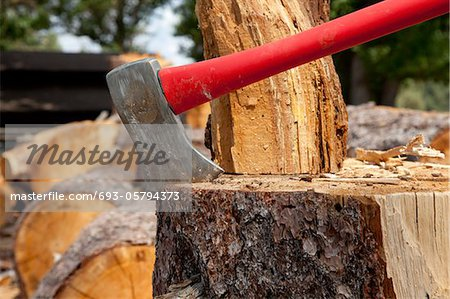 Axe wedged into tree stump Stock Photo - Premium Royalty-Free, Image code: 693-05794373