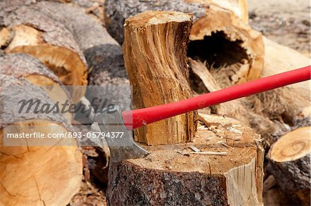 An axe wedged into a tree stump Stock Photo - Premium Royalty-Free, Image code: 693-05794377