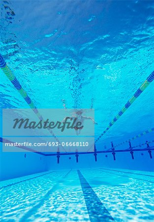 Underwater shot of male athlete swimming in pool Stock Photo - Premium Royalty-Free, Image code: 693-06668110