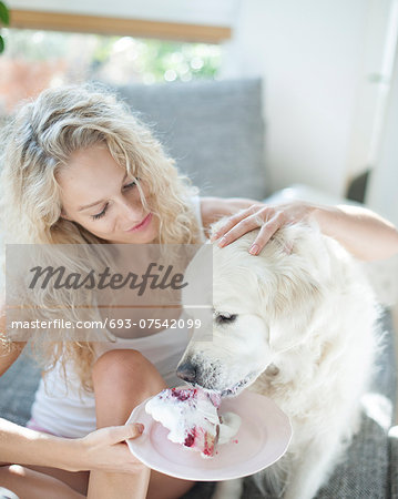 Beautiful woman feeding cake to dog in house Stock Photo - Premium Royalty-Free, Image code: 693-07542099