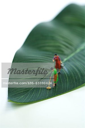 Miniature women mopping puddle on leaf Stock Photo - Premium Royalty-Free, Image code: 695-03390424