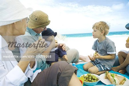 Grandparents and grandchildren having picnic on beach Stock Photo - Premium Royalty-Free, Image code: 695-05779168