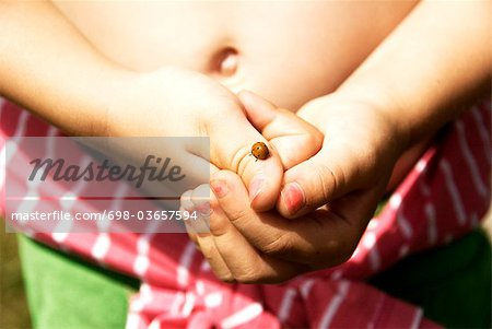 Ladybird on finger Stock Photo - Premium Royalty-Free, Image code: 698-03657594