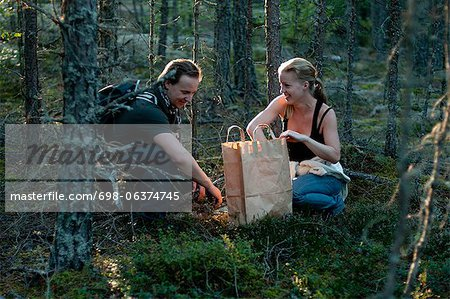Mid adult couple foraging for mushrooms in woods Stock Photo - Premium Royalty-Free, Image code: 698-06374745