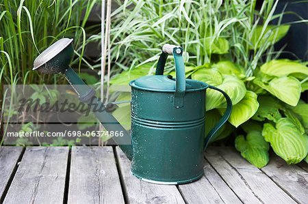 Watering can on wooden plank with plants in background Stock Photo - Premium Royalty-Free, Image code: 698-06374866