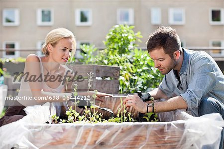 Young couple gardening at urban garden Stock Photo - Premium Royalty-Free, Image code: 698-06444212
