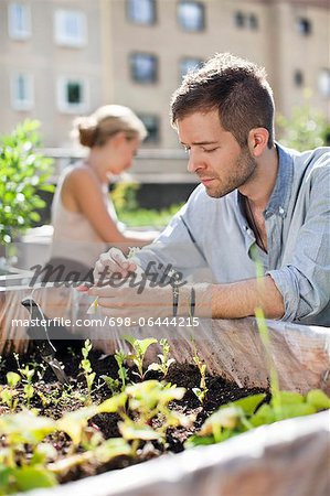 Young man gardening with woman in the background Stock Photo - Premium Royalty-Free, Image code: 698-06444215
