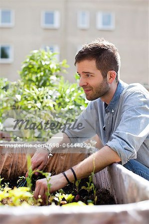 Young man gardening at urban garden Stock Photo - Premium Royalty-Free, Image code: 698-06444220