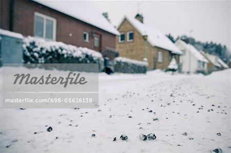 View of snow-covered street with houses in the background Stock Photo - Premium Royalty-Free, Image code: 698-06616138