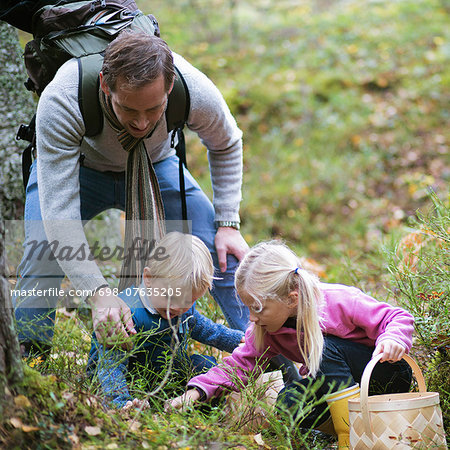 Father with children picking mushrooms in field Stock Photo - Premium Royalty-Free, Image code: 698-07635205