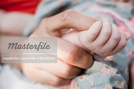 Cropped image of woman holding baby's hand Stock Photo - Premium Royalty-Free, Image code: 698-08008093