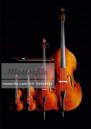 Viola, Violin, Cello and Bass