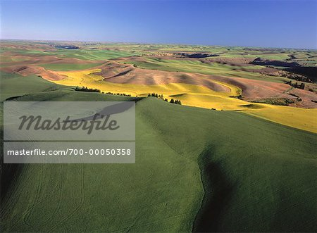 Aerial View of Palouse Hills Colfax, Washington, USA Stock Photo - Rights-Managed, Image code: 700-00050358