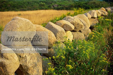 Stone Fence in Field Block Island, Rhode Island, USA