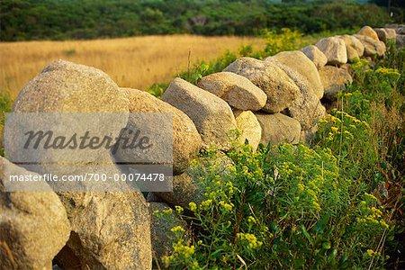 Stone Fence in Field Block Island, Rhode Island, USA