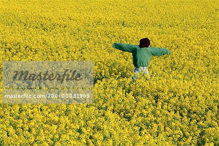 Scarecrow in Canola Field Stock Photo - Rights-Managed, Image code: 700-00081999