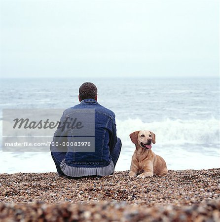 Back View of Man Sitting on Beach With Dog England