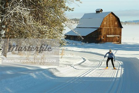 Woman Cross Country Skiing Stock Photo - Rights-Managed, Image code: 700-00161279
