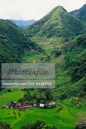 Small Terrace-Farming Town Philippines Stock Photo - Rights-Managed, Image code: 700-00183719