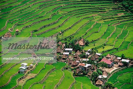 Small Terrace-Farming Town Philippines Stock Photo - Rights-Managed, Image code: 700-00183720