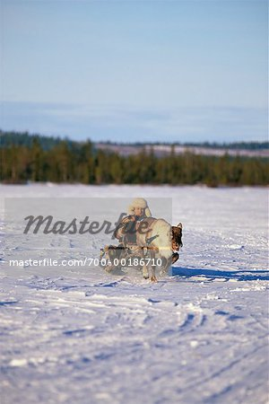 Laplander with Reindeer Lapland, Sweden Stock Photo - Rights-Managed, Image code: 700-00186710