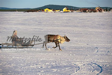 Laplander with Reindeer Lapland, Sweden Stock Photo - Rights-Managed, Image code: 700-00186711