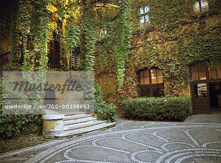 Vines and Mosaic in Courtyard Budapest, Hungary Stock Photo - Rights-Managed, Image code: 700-00198693