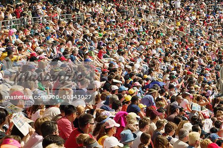 Crowded Bleachers
