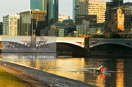 Rowers on Yarra River Melbourne, Victoria, Australia