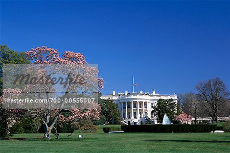 White House, Washington D.C., USA Stock Photo - Rights-Managed, Image code: 700-00555007