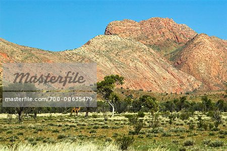 Mountains Near Haasts Bluff, Northern Territory, Australia