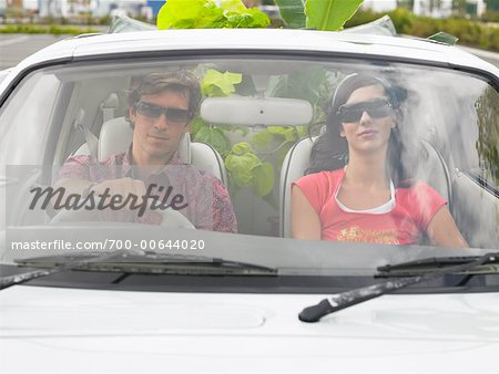 Couple in Car, Plants In Backseat Stock Photo - Rights-Managed, Image code: 700-00644020