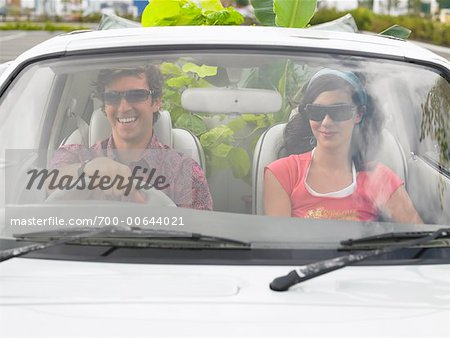 Couple in Car, Plants In Backseat Stock Photo - Rights-Managed, Image code: 700-00644021