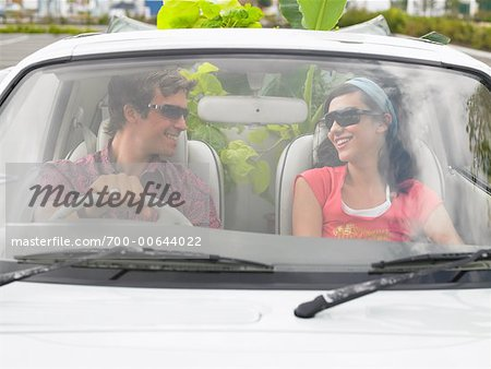 Couple in Car, Plants In Backseat Stock Photo - Rights-Managed, Image code: 700-00644022