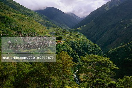 Rice Terraces Along Halsema Highway, Benguet, Luzon, Philippines Stock Photo - Rights-Managed, Image code: 700-00910879