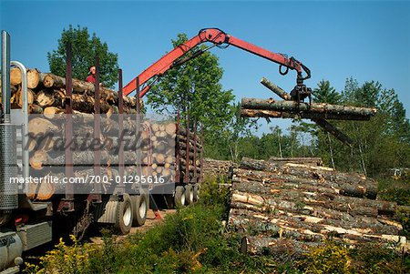 Claw Loading Lumber onto Truck Stock Photo - Rights-Managed, Image code: 700-01295616