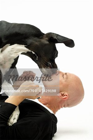 Dog Kissing Man Stock Photo - Rights-Managed, Image code: 700-01429198