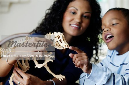 Mother and Son Playing with Dinosaur Model Stock Photo - Rights-Managed, Image code: 700-01519693