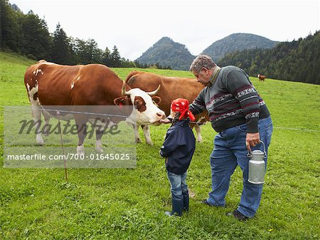 Man and Girl on Dairy Farm Stock Photo - Rights-Managed, Image code: 700-01645025