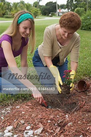 Granddaughter and Grandmother Gardening Stock Photo - Rights-Managed, Image code: 700-01646143