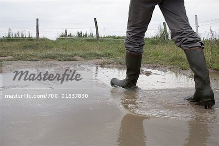 Man Walking through Puddle on Farm, Dahme, Schleswig-Holstein, Germany