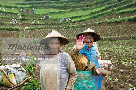 Portrait of People Working on Potato Farm, Dieng Plateau, Central Java, Indonesia