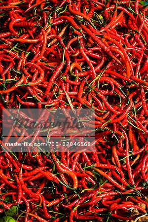 Chili Peppers Stock Photo - Rights-Managed, Image code: 700-02046566