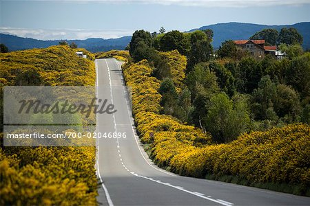 Highway in Los Lagos Region, Chiloe Island, Chile Stock Photo - Rights-Managed, Image code: 700-02046896