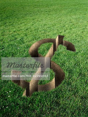 Dollar Sign Cut Out in Field of Grass Stock Photo - Rights-Managed, Image code: 700-02265002