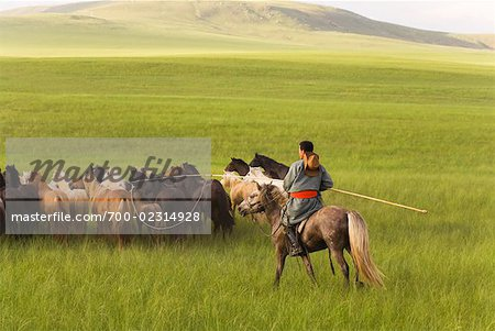 Horseman Herding Horses, Innner Mongolia, China Stock Photo - Rights-Managed, Image code: 700-02314928
