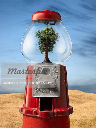 Tree in Gumball Machine by Desert Stock Photo - Rights-Managed, Image code: 700-02377619